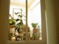 reformas de viviendas por arquitectos madrid 083